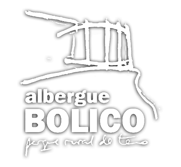 Home logotipo_bolico