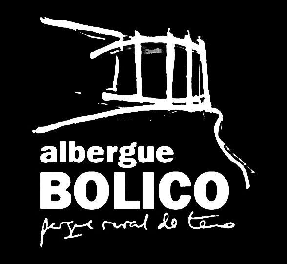 Home logotipo_bolico