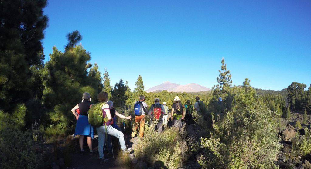 Ruta Jacobea Tinerfeña 2018. El Camino de Santiago de Tenerife G0093830