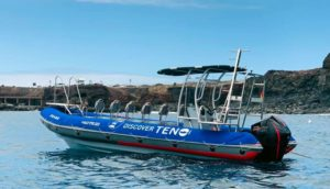 Las 6 mejores experiencias para esta Semana Santa en Teno e Isla Baja. barco-teno-300x172