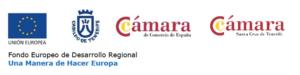 Programa de Competitividad Turística federcabildocamaras-300x75