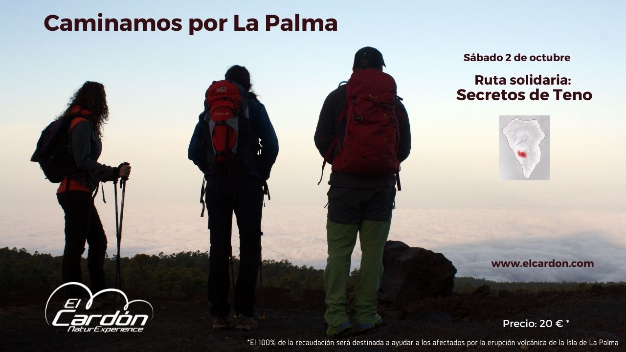 Portada CaminandoPor-LaPalma